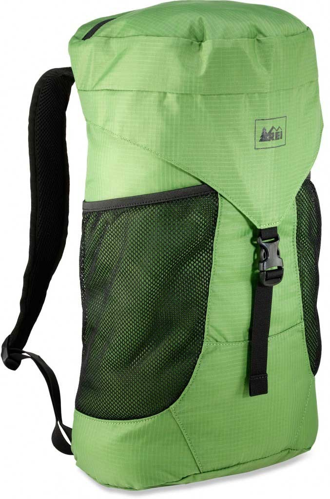 REI Travel Day Pack